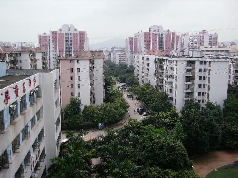 皖宁成丰木业厂图片