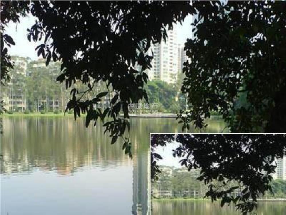 仙湖名苑-实景图