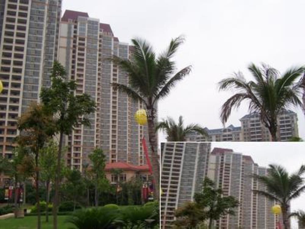 美林海岸花园小区_美林海岸花园房价-广州中原地产网