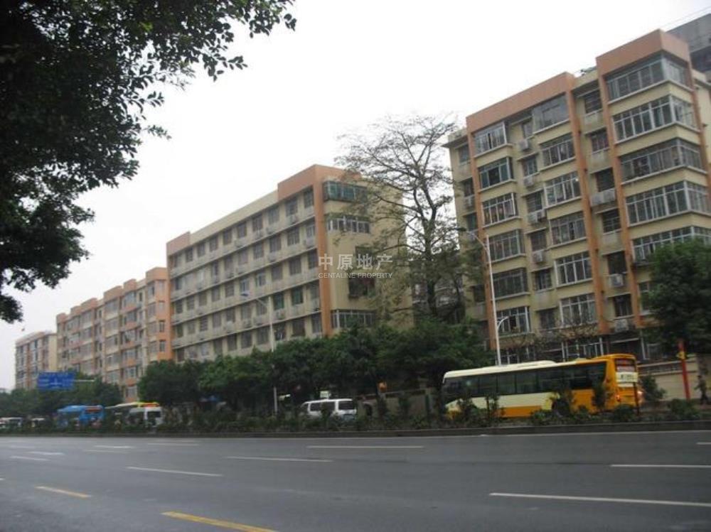 远洋小区(新港西路攀桂街)-实景图